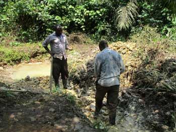 Défrichage du périmètre d'une source gravitaire d'eau potable à Kabweke au Nord Kivu en RD Congo