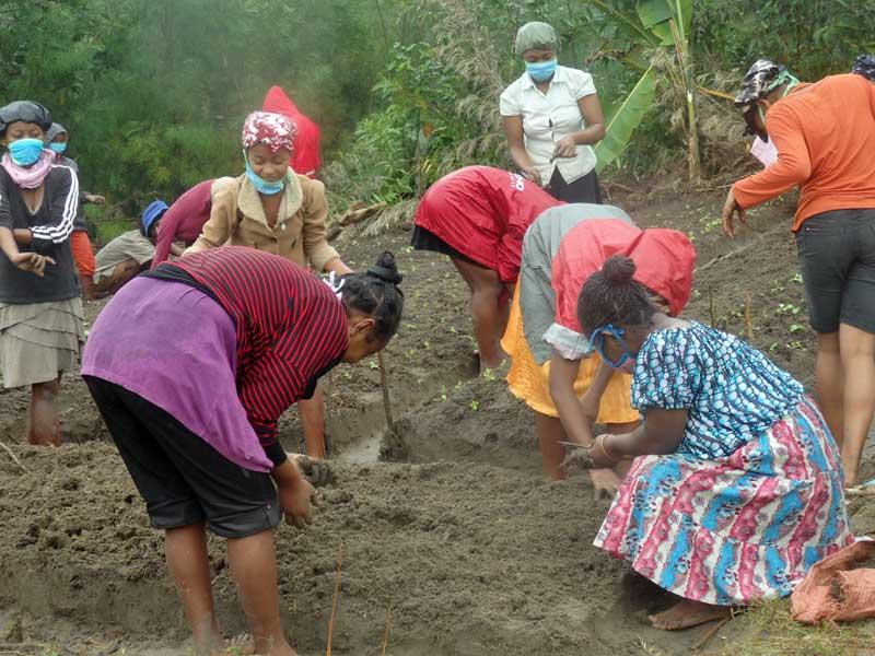 Séance de jardinage pour les enfants de l'orphelinat l'Ile Ste Marie à Madagascar