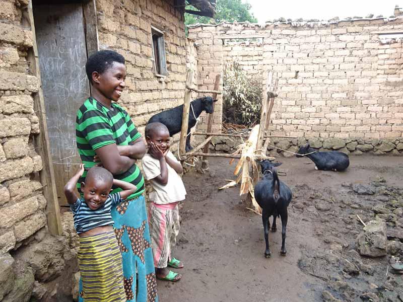 Habitation d'une famille de Basa et son petit élevage de chèvres