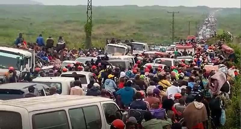 Evacuation de la ville de Goma, la file des réfugiés sur la route de l'exode