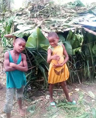 Enfants Pygmées Bagyeli construisant une cabane de campement dans la forêt